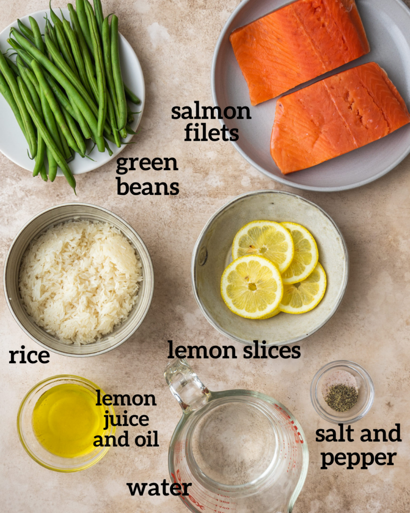 above view of ingredients for instant pot salmon and rice