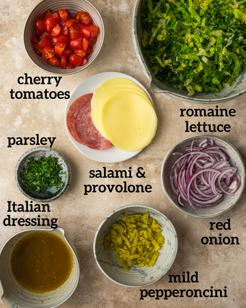 Ingredients for a homemade Italian salad